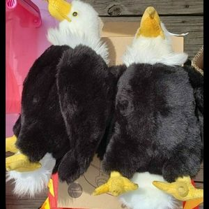 Twin Eagles from Dollywood amusement park memorbil